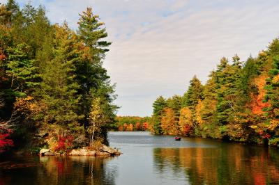 fall foliage and water